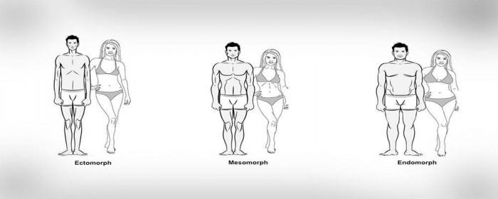 de-drie-lichaamstypes.jpg
